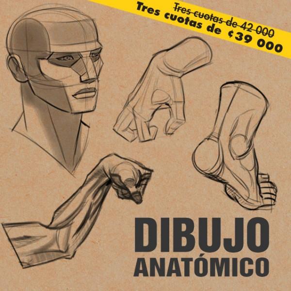 Dibujo-Anatomico-II