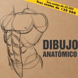 Dibujo Anatomico