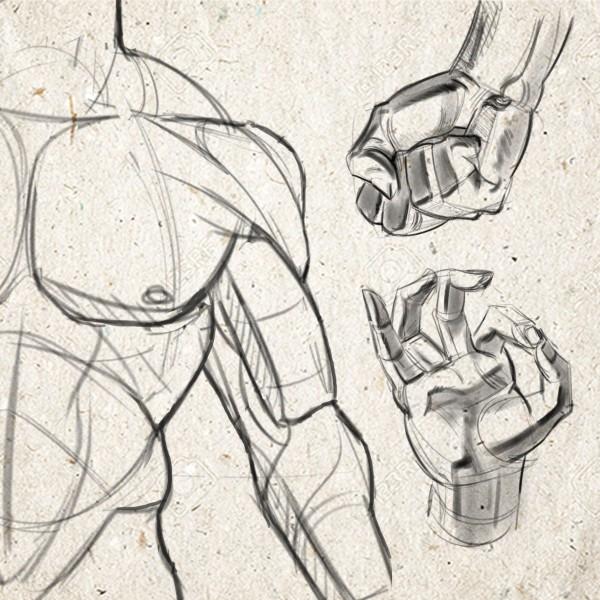 portada-anatomico