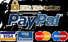 pago-seguro-paypal-png-4