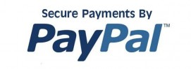 45973-secure-paypal-logo