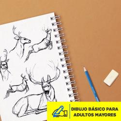 Dibujo Básico para Adultos Mayores Abril 2020 Imagen