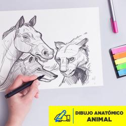 Dibujo Anatómico Animal Abril 2020 Imagen