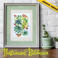 ProductoIlustBotánica2
