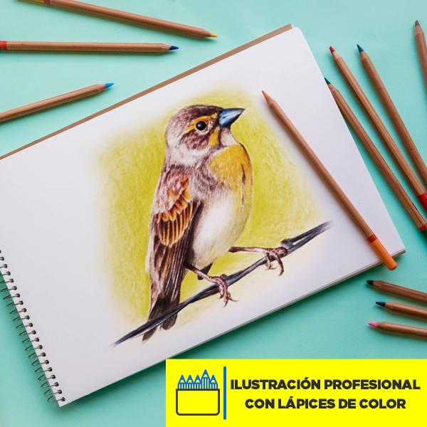 Ilustración profesional con lápices de color Imagen