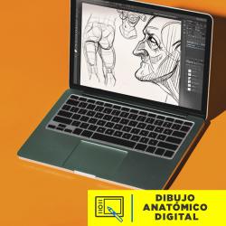 Dibujo Anatómico Digital Imagen