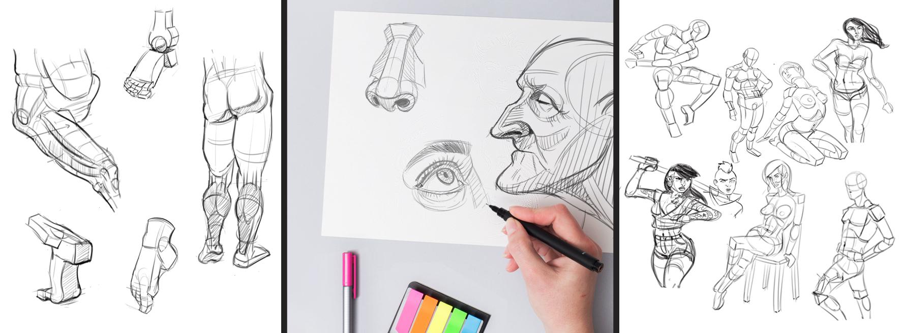 Banner Dibujo Anatómico  general Santa Gráfica online