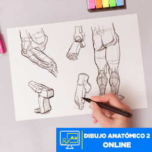 Dibujo Anatómico 2 online Imagen