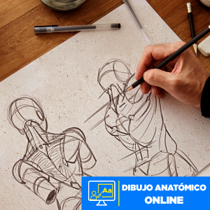 Dibujo Anatómico online Imagen